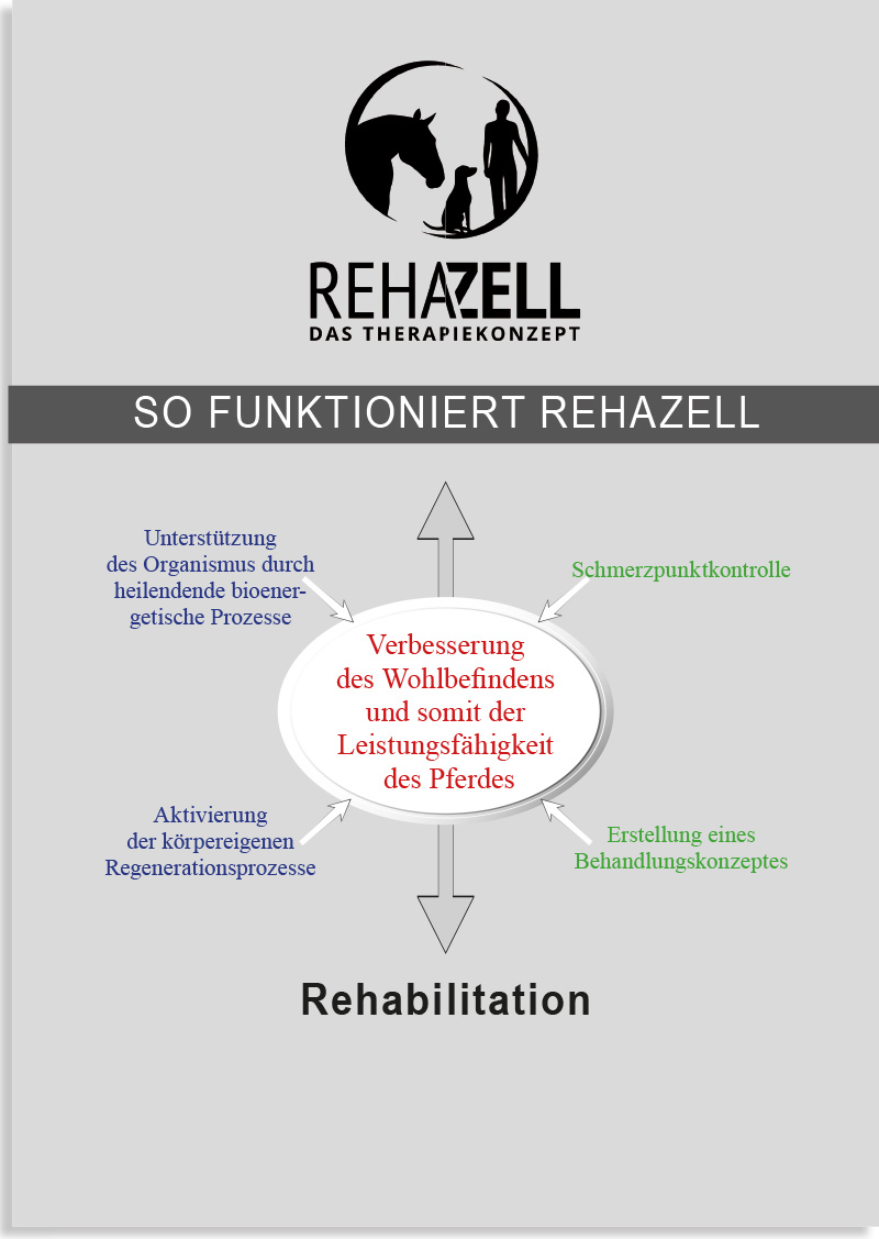 So funktioniert REHAZELL